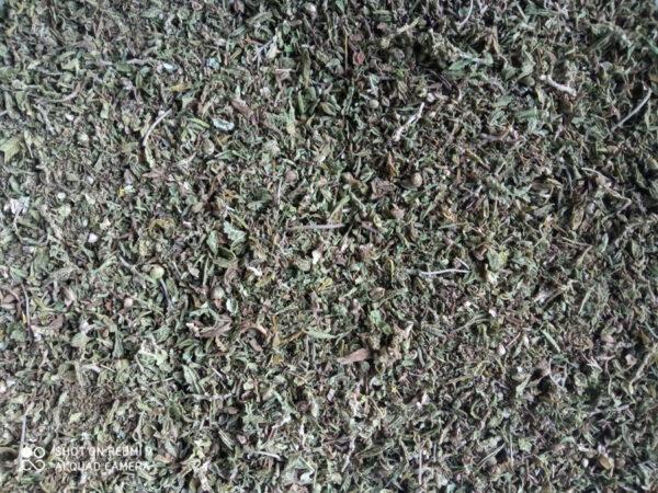 🔍 Suszu konopny do przetwórstwa. Ręcznie zbierany Prima Sort CBD 3,65% Cena 1 kg