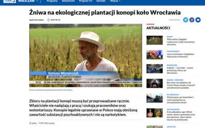 Żniwa konopne w Kryształowicach reportaż TVP Wrocław