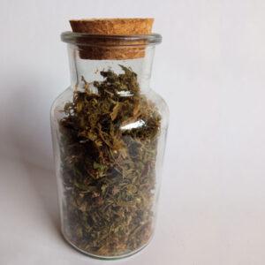 Susz kwiaty konopi CBD 10 gram